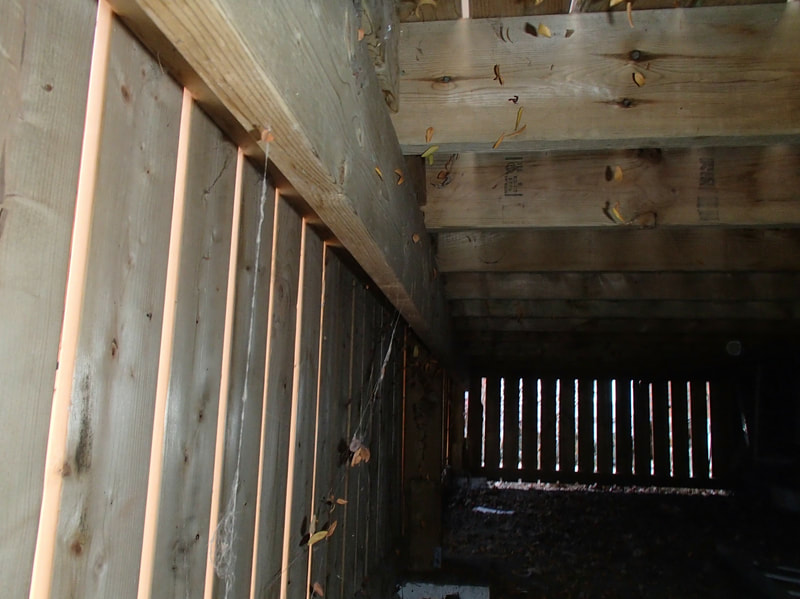 home inspection crawl space